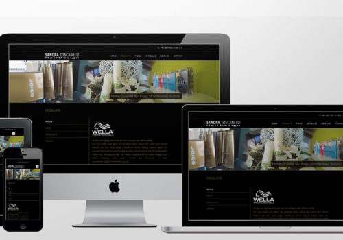 Webdesign Sandra Toscanelli Hairdesign Produkte